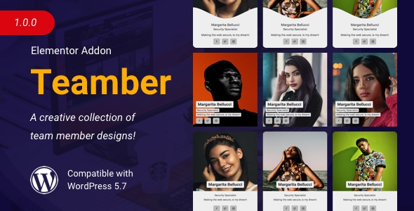 [Free Download] Teamber | Team Member Collection for Elementor (Nulled) [Latest Version]
